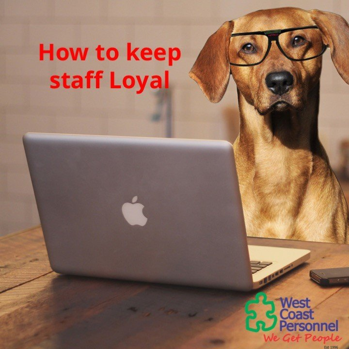 loyal staff